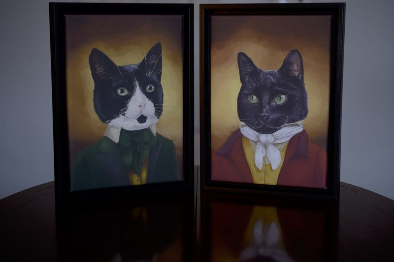 Katzenporträts